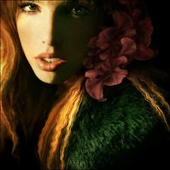 Ash Trays (ILINA S.) Tags: flowers selfportrait bravo dreamcatcher 500x500 ilina ilinas vision100 poemilinas