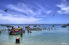 pescadores (Sergio  Bruno) Tags: mar venezuela margarita pescadores pescados ocenao golddragon