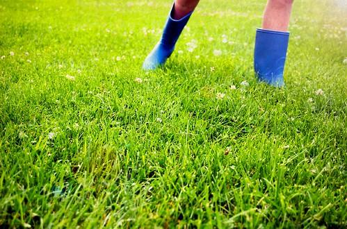 Blue Boots (Explore!)