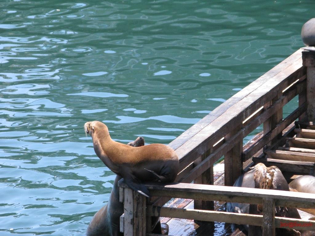 Monterey June 12, 2008