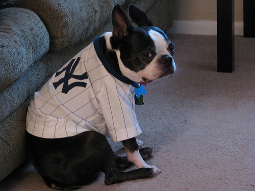 argh...the Yankees lost :(