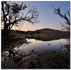 Sticky Sunrise (Vertorama) (Panorama Paul) Tags: novideo supershot fpg nohdr andreinafrica danielkhc vertorama nikond300 waterberggamereserve
