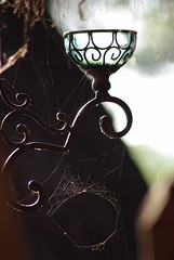 Spiderweb on the sconce