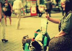 Selling Dogs (davies.thom) Tags: dog pet cat ukraine oldwoman kiev babushka