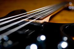 Bass Guitar (Surely Not) Tags: macro scotland nikon edinburgh bass guitar sigma d80 yourphototips nikondslrukpool