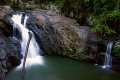 Crystal Cascades (WilliamBullimore) Tags: longexposure morning trees tree green tourism nature water ecology rock landscape waterfall log rocks australia rapids queensland gorge cairns ecotourism tropicalrainforest canonefs1022mmf3545usm flowingwater digitalcameraclub touristdestination extremeterrain crystalcascades freshwatercreek goldstaraward atomicaward