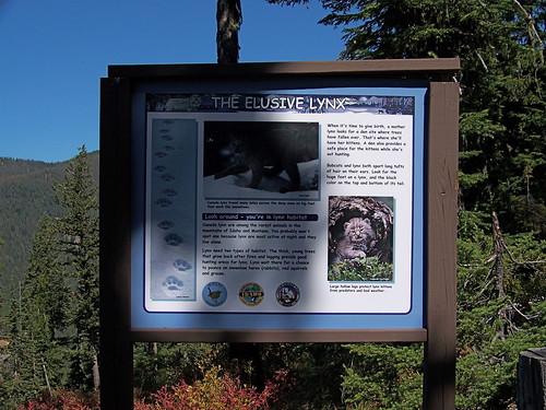 Canada Lynx habitat
