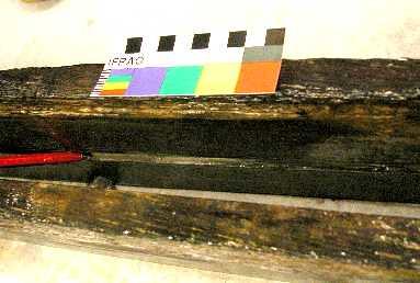 SS City of Launceston artefact