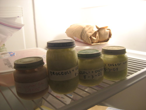 Homemade baby food in the freezer
