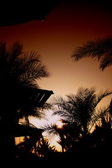 Sunset in Sharm (sciack) Tags: sunset sharmelsheikh marriotthotelbeach