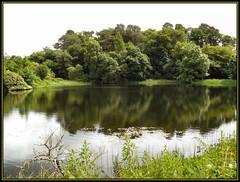 Joys of the Emptiness (Bricheno) Tags: trees lake reflection scotland pond escocia oban loch mere szkocja schottland boringphoto scozia cosse  esccia  polvinister  bricheno scoia