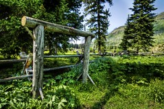 The Entrance to the Conifer Forest (Stuck in Customs) Tags: ranch trees panorama tree green lines composition forest photography intense woods nikon gate montana paradise shoot photographer shadows open shot angle image unique background space details perspective picture evergreen edge processing pro yellowstone wyoming framing capture forests hdr conifer treatment stuckincustoms treyratcliff