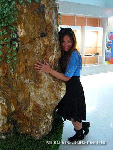 fossil tree hugger