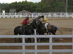 Rodeio Caapavano (All Paz) Tags: show horse branco brasil areia cerca arvores cavalo riograndedosul sul gaucho palco entardecer viso rodeio tradicao gineteada ginete tropilha amadrinhador