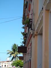 Archivo Tlacotalpan - Agosto 2008 (10)