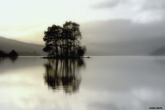 Simply still,Simply Scotland............ (Nicolas Valentin) Tags: reflection tree art nature water island freedom scotland still bravo scenery photos fine calm serene loch kenmore kool lochtay outstandingshots anawesomeshot aplusphoto infinestyle theunforgettablepictures