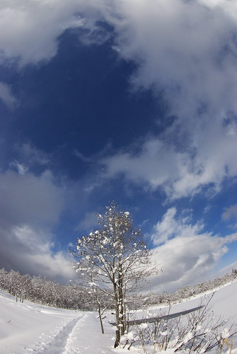 20090103034風雲