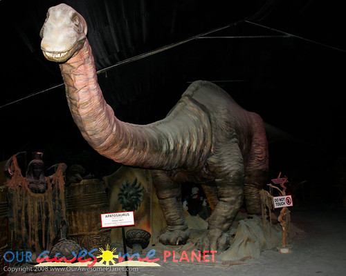 Dino's Alive-67