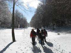 Verso il Belvedere