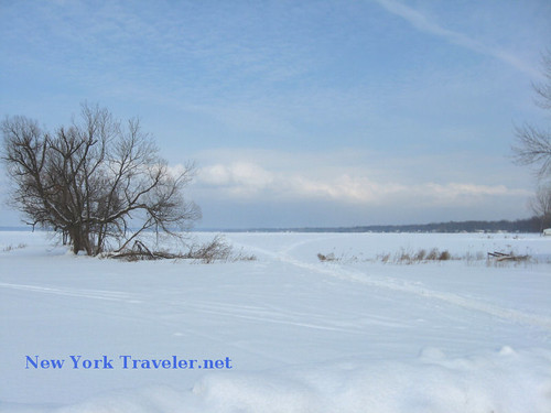 Banks of Frozen Oneida Lake