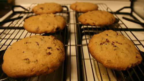 대추 Cookies