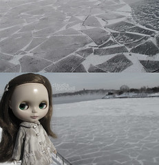dolly diptych weekly 2/52