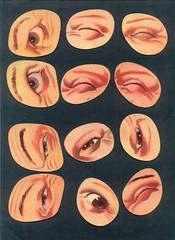 physog yeux 2