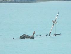 Bardini Reefer Wreck
