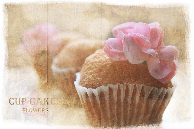 Romantic Cup Cakes by marie b. | photographie
