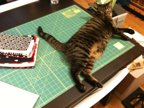 Quilting With Cats