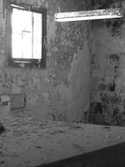 P8120020.JPG (Michael Ferranti Photography) Tags: wood city newyorkcity bridge winter light shadow summer sky dog sun moon house mountain lake plant abstract man color tree eye fall church window water face car animals fruit skyline cat garden dead fire dawn photo duck drops spring eyes hands chili child waterlily basket autum lotus dusk earth path pastel buddha jesus crack collection shade figure alive meditation portfolio spiritual gothamayurveda michaelferrantiphotography mferrantiphoto