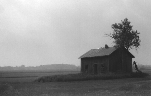 Old Homestead #2