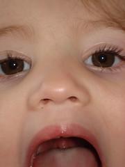 Vandaag het woord 'huig' geleerd (knoorvanwijngaarden) Tags: noor