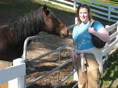 Kelsey Creek Farm Horse