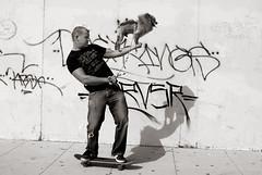 . (Tom Andrews) Tags: california street venice dog pet cali graffiti losangeles skate skateboard mohawk venicebeach skater cutedog funnydog laist dogtricks californiastyle trickdog tomandrews thelittledoglaughed calistyle skatingdog excapture dogonskateboard dogstunts skateboardingskateboardingdog streetphotographynow