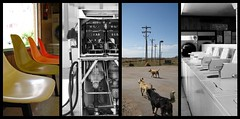e (illuminnow) Tags: dog roadtrip gasstation laundry zion polyptych tych sw2008