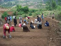 Ethiopia 2008