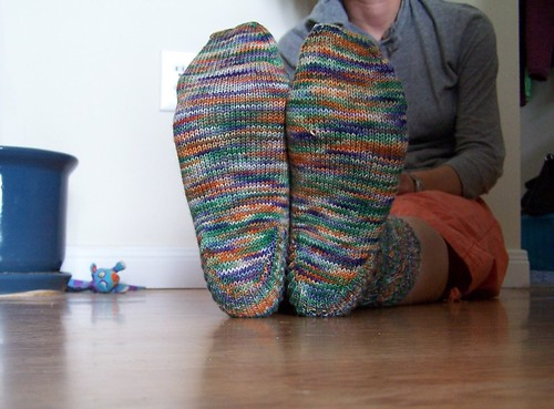 Pomatamus Socks