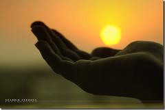 Give Me A Bokeh! (Shabbir Ferdous) Tags: sunset sky sun art nature sunshine fun photographer hand bokeh dhaka soe bangladesh bangladeshi expressyourself canonef50mmf18ii shieldofexcellence canoneosrebelxti anawesomeshot theperfectphotographer shabbirferdous wwwshabbirferdouscom shabbirferdouscom