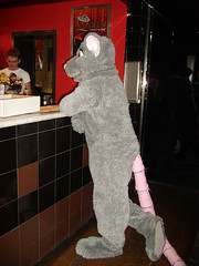 Rattus at a gay pub