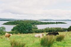 Corrib Lough