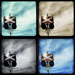 Crossing Polyptych (Australian Photography) Tags: jules ttv redbubble
