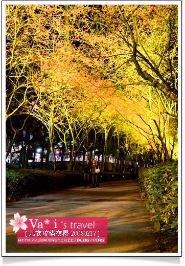 【南投一日遊】九族文化村~2008九族櫻花季之璀璨夜櫻