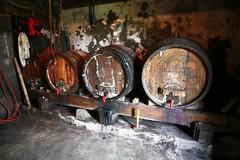 20080525_1846 (Borut Peterlin) Tags: vineyard vikend vikendica zidanica straza