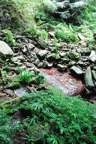 紅色的石頭