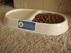 Illuminati-owned cat food bowl