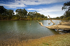 IMG_0728_Murray_River_Corowa