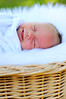 warm fuzzies. ({ chelseyrobertsphoto }) Tags: boy sleeping white fur basket outdoor newborn greengrass sleepsmile boynewborn