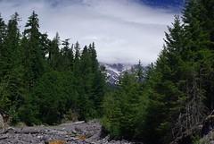 2008-07-31 Mt Ranier (2)