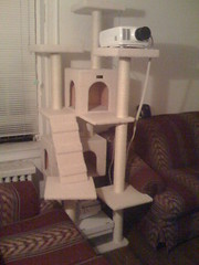 Lys' New Playhouse